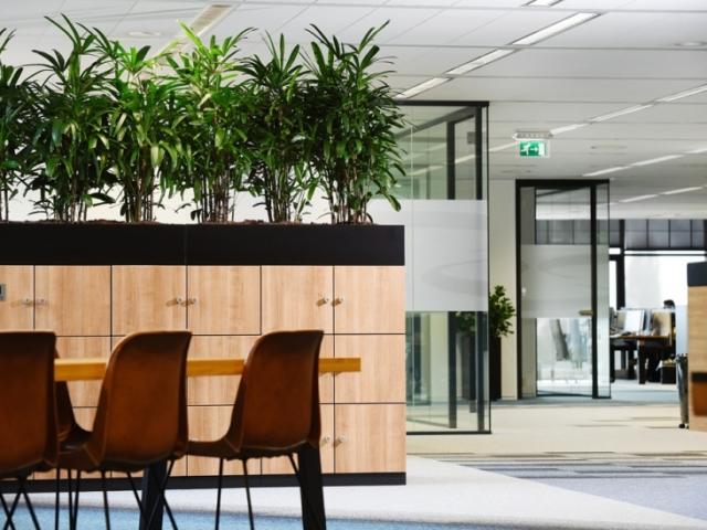 Interieurbeplanting design strak