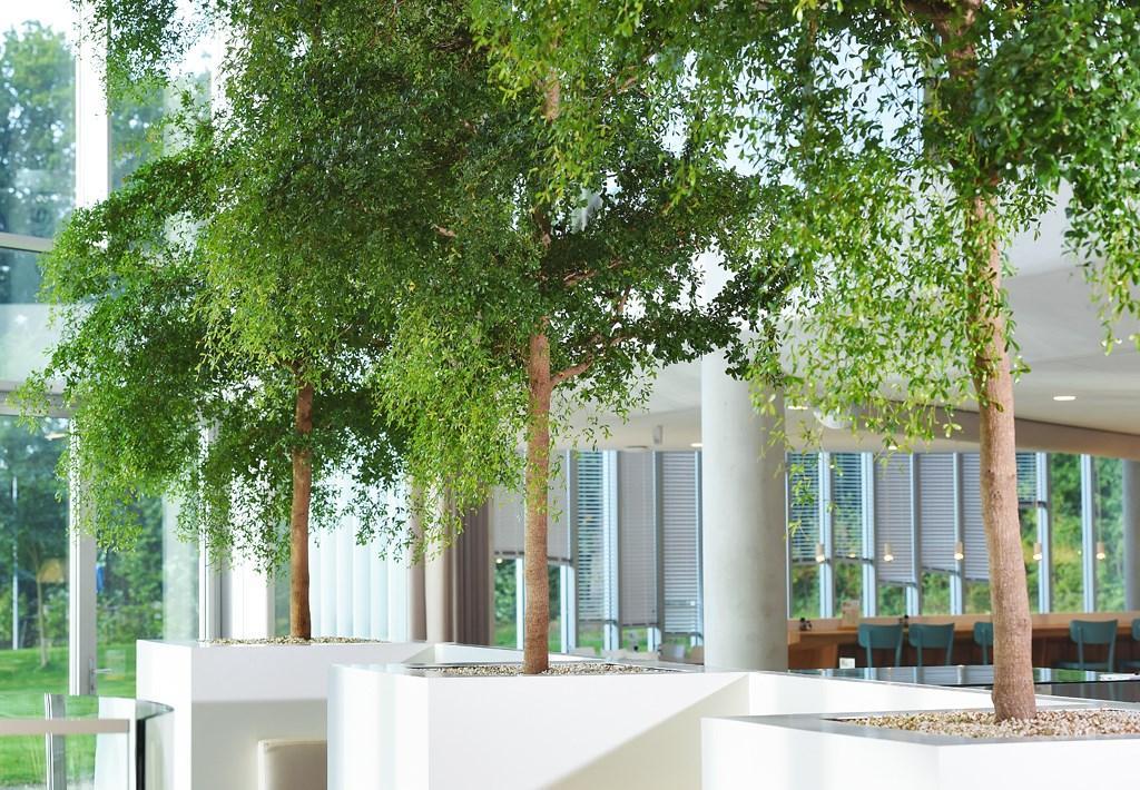 XL-objecten-modern-look-interieur-kantoor-detail.jpg