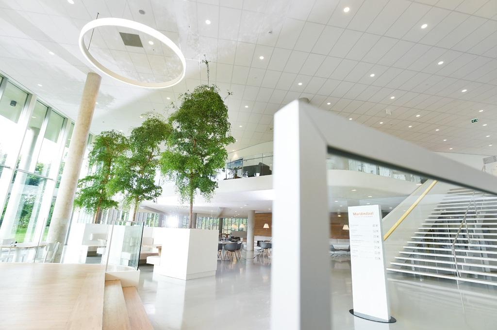 XL-objecten-modern-look-interieur-kantoor-groot.jpg