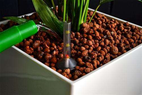 Onderhoud van plantenbakken