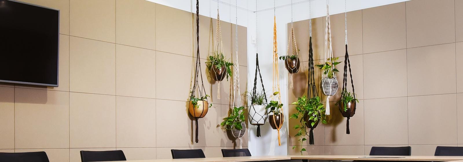 Hangplanten-Kantoor.jpg