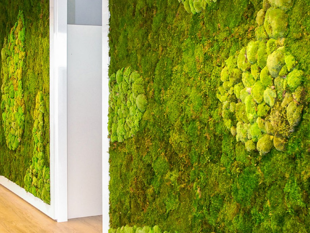 Wand met mos