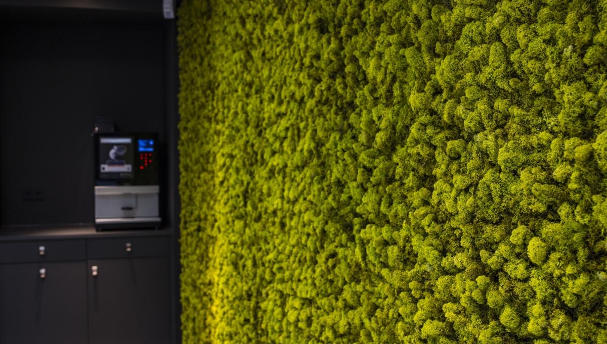 Unieke wand van mos door Ten Brinke Interieurbeplanting
