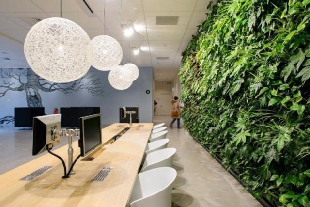 Plantenwand groot interieurbeplanting