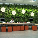 Plantenwand interieurbeplanting divers