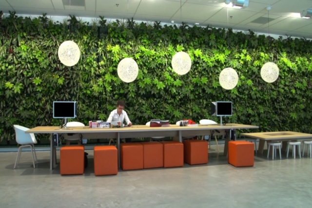 Plantenwand interieurbeplanting