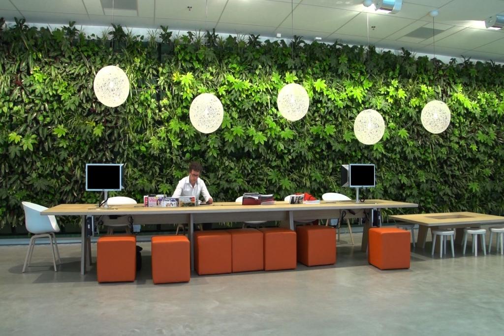 Plantenwand_ten-brinke-interieurbeplanting-divers.jpg