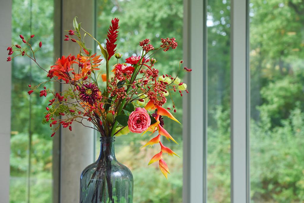 Decoratie met planten door Ten Brinke Interieurbeplanting
