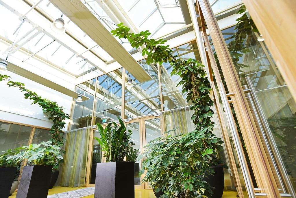 Interieurbeplanting_industrieel-natuurlijk-1.jpg
