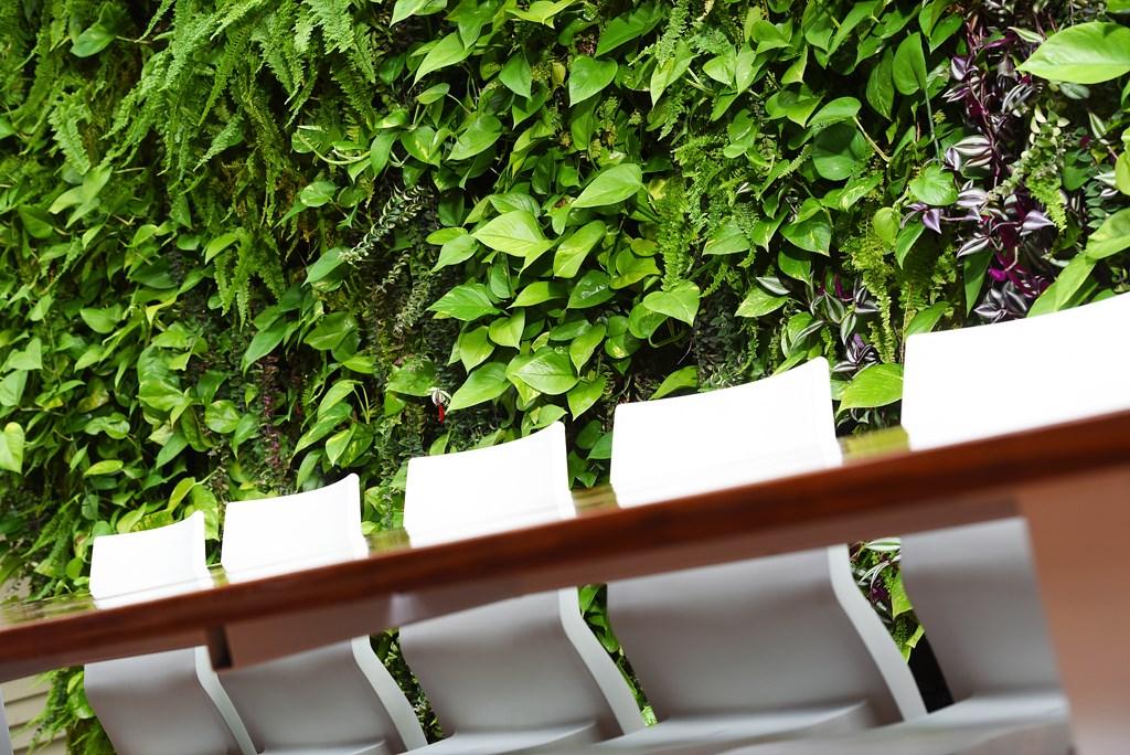 Groene_wand_Ten-Brinke-Interieurbeplanting.jpg