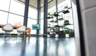 Industrieel look interieurbeplanting kantoor groot