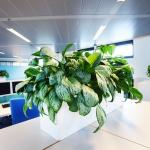 Industrieel look interieur kantoor wit(2)