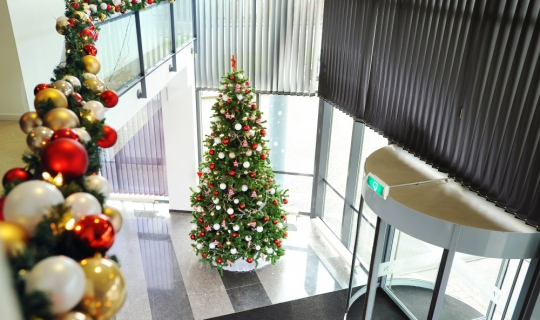 Kerst kerstdecoratie Interieurbeplanting
