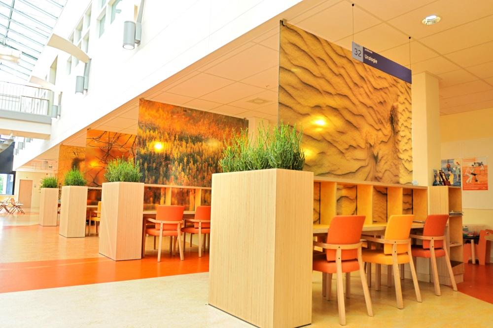 Natuurlijke_look-interieur-openbaar_ten-brinke-interieurbeplanting.jpg