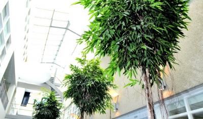 XL objecten detail plant