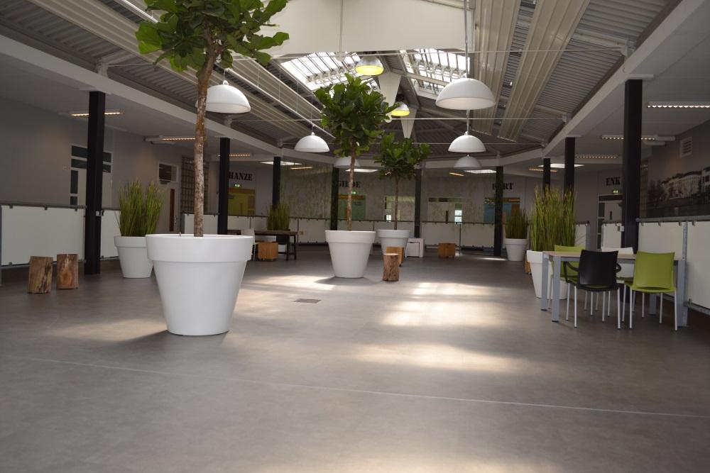 XL-objecten-kantoor-interieurbeplanting-divers.jpg