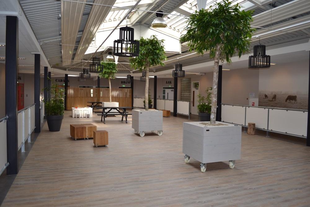 XL-objecten-kantoor-interieurbeplanting.jpg