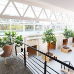 XL objecten open ruimte plantenbakken