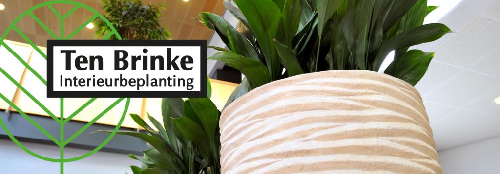 Banner_Ten-Brinke-Interieurbeplanting