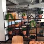 Plantenbakken in stellage interieurbeplanting