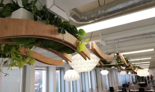 Plafondplanten kantoor