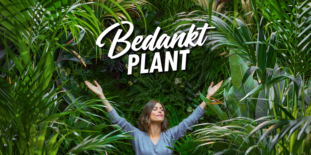 Bedankt-plant-Ten_Brinke_Interieurbeplanting