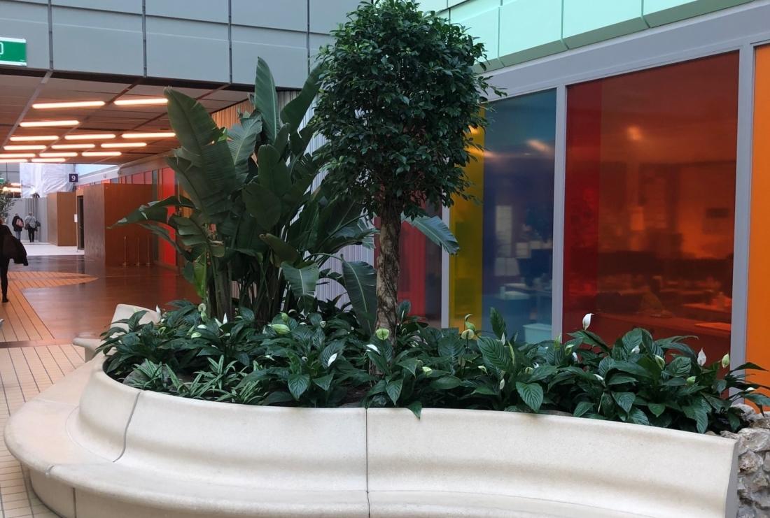 Diverse-beplanting-in-inbouw-plantenbakken-1100x741.jpg