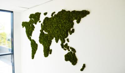 Mos op wereldkaart kantoor