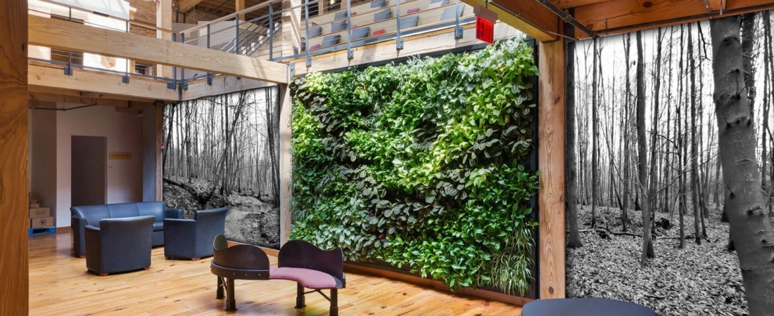 Plantenwand kantoor