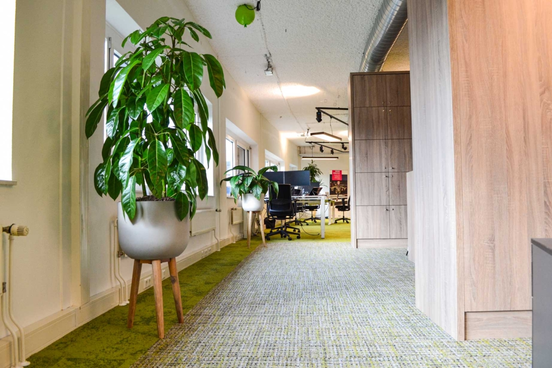 Beplanting-voor-op-kantoor-1100x734.jpg
