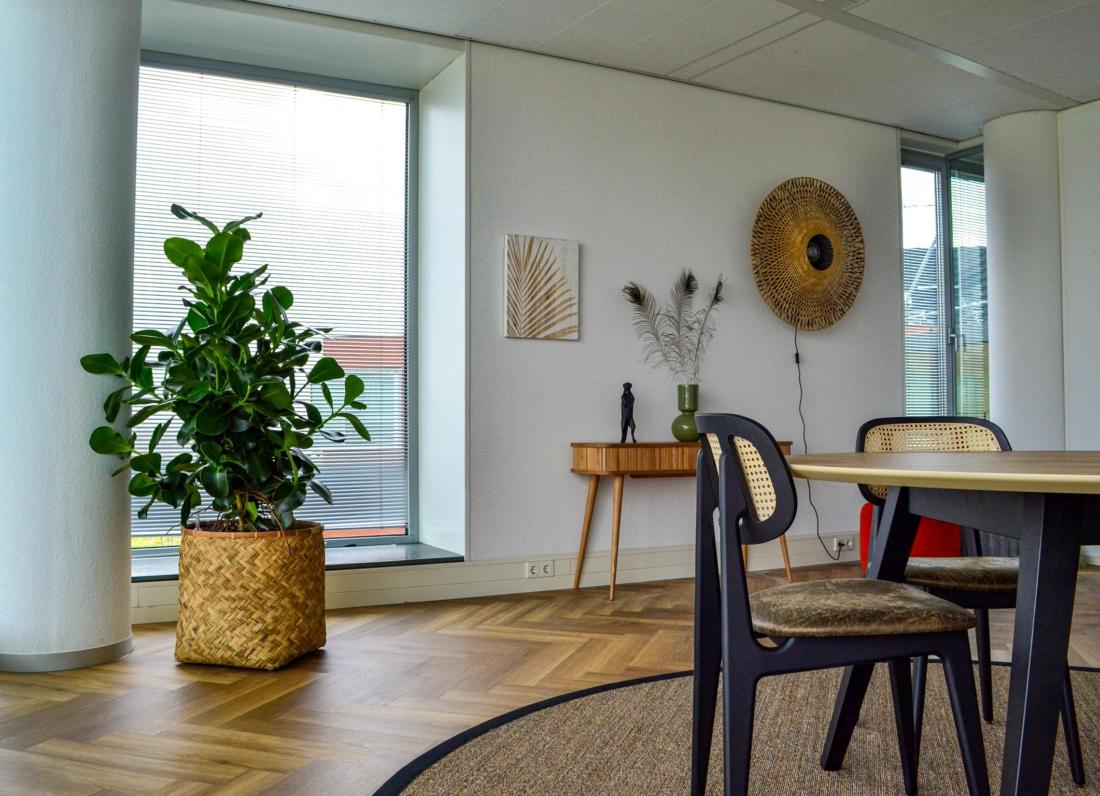 Bohemian-plantenbak-huiselijk-gevoel-1100x796.jpg