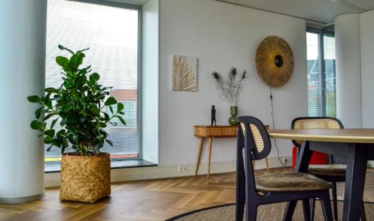 Natuurlijke plantenbak bij Wortell Gouda