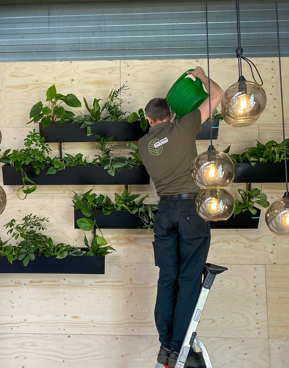 Onderhoud plantenwand