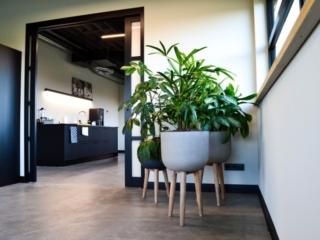 Werkplek-planten-Dynamic-Logistics