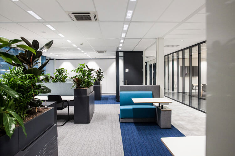 Diverse-beplanting-kantoor-tb.jpg