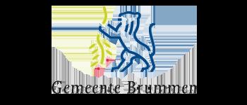 gemeente brummen logo
