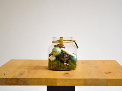 Glas met amaryllis