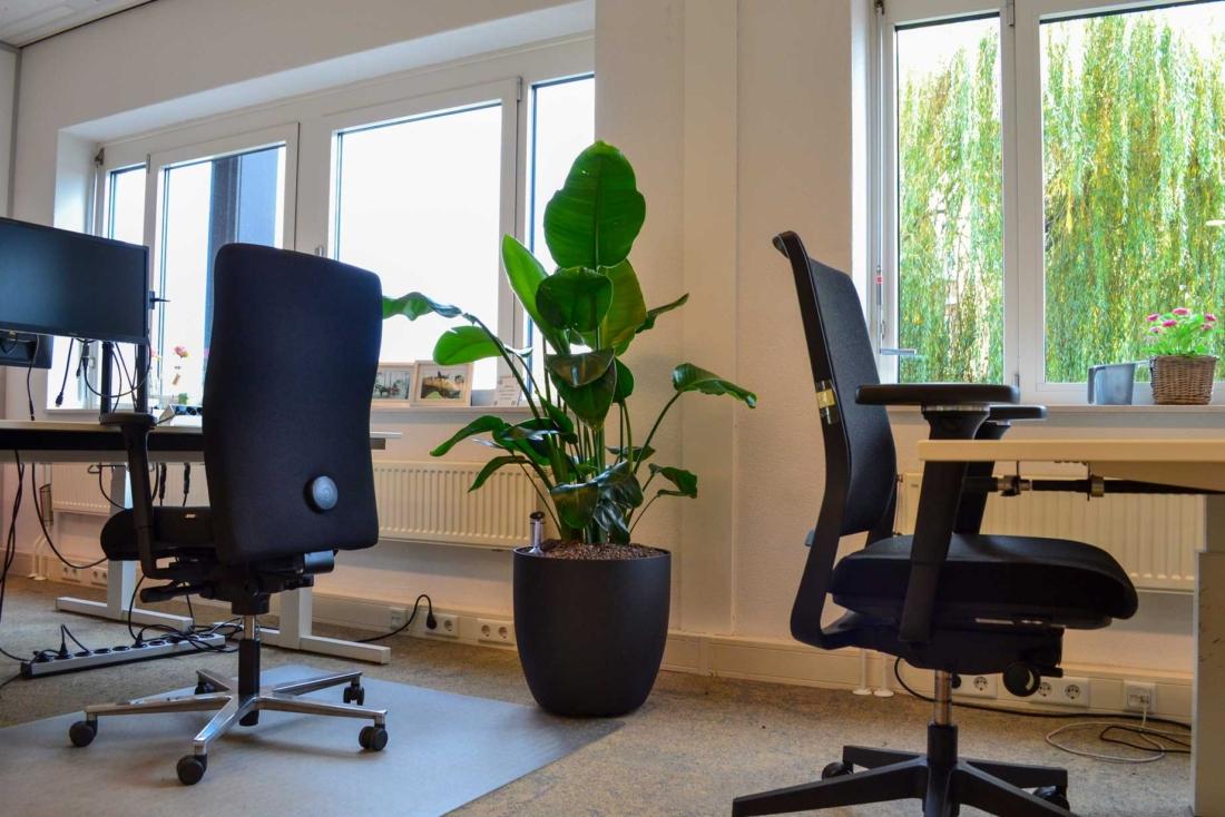 Goudappel-kantoor-inrichting-plantenbak-1100x734.jpg