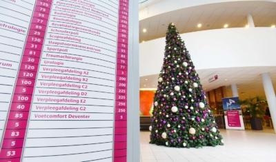 Kleurcombinatie Noor XL Kerstboom
