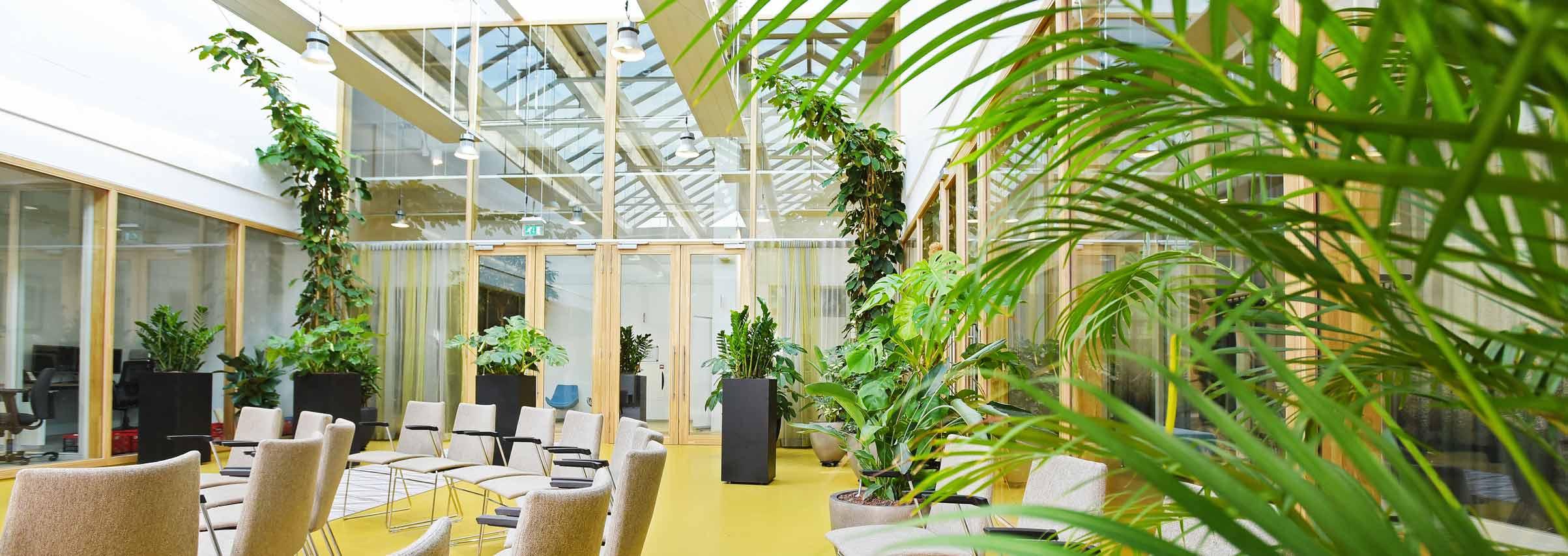 Interieurbeplanting-kantoor.jpg