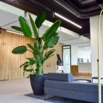Interieurbeplanting Oston Pan