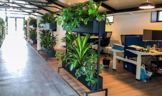 Beplanting op werkplek