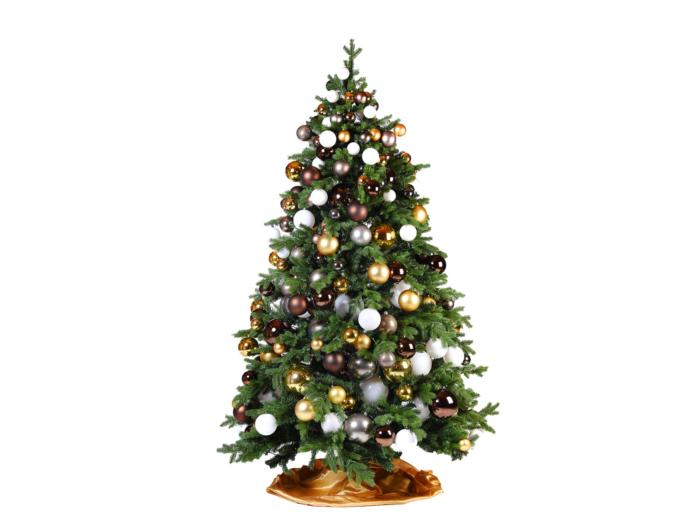 Kerstbomen op locatie huren