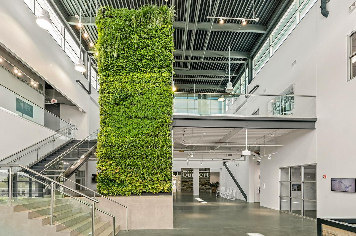 Enorme plantenwand in gebouw