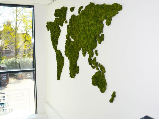 Unieke moswereldkaart op een witte wand