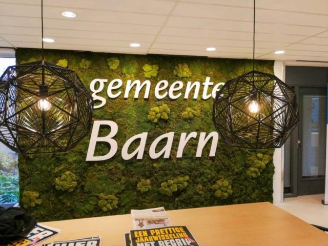 Mix van twee mossen bij gemeente Baarn