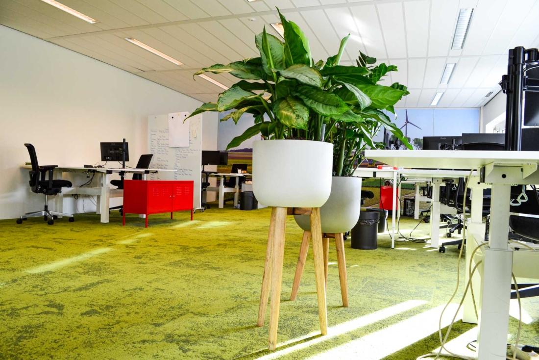 Plantenbakken-op-pootjes-kantoor-1100x734.jpg