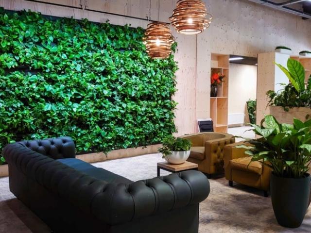 Plantenwand binnen bij Ten Brinke Interieurbeplanting