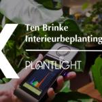 Uitgelicht: Parus plantlight