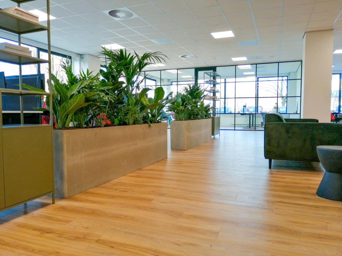 Rechthoek-plantenbak-met-diverse-beplanting-kantoor-1100x825.jpg
